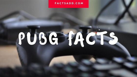 Pubg facts