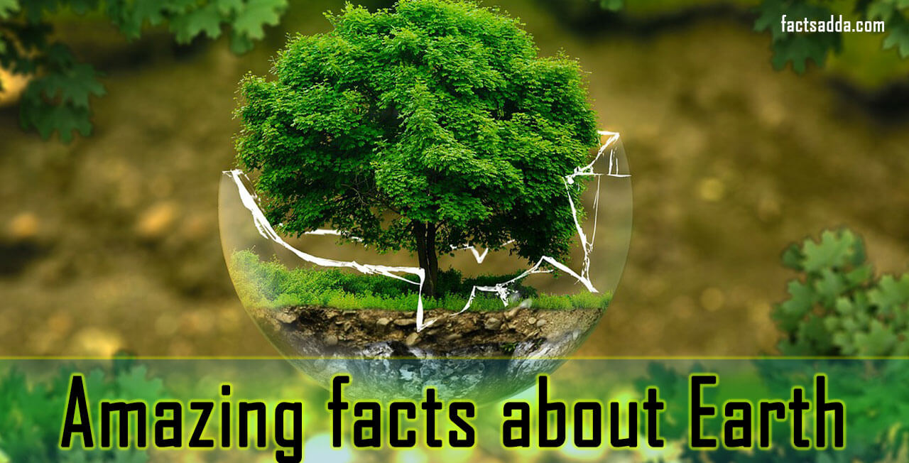 amazing facts about earth
